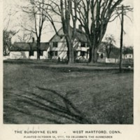 The Burgoyne Elms, West Hartford, Conn